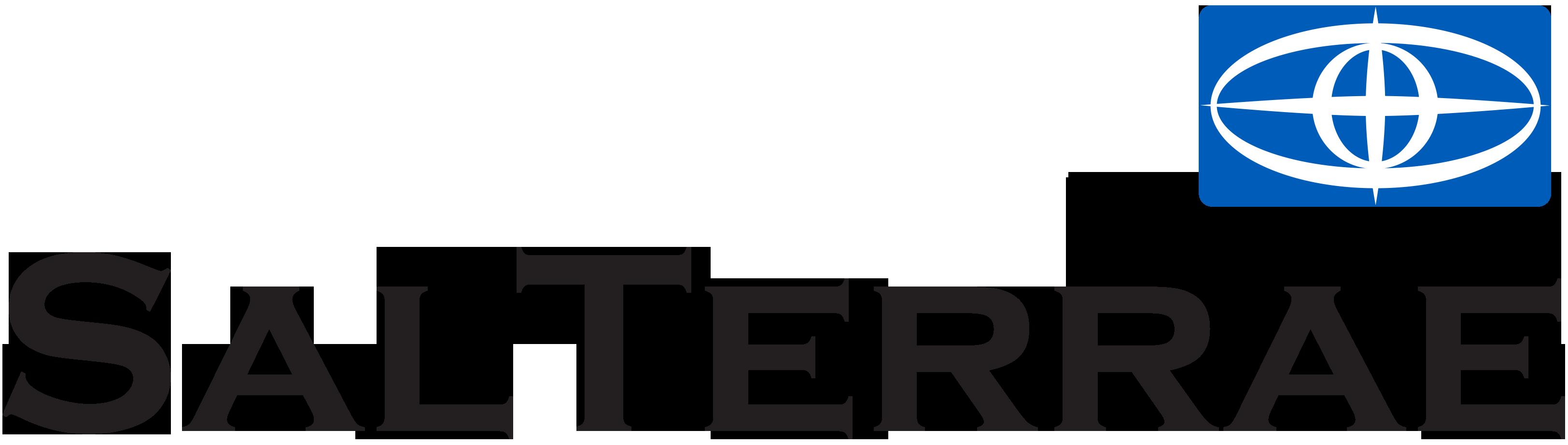 logo-ST-plano-(2)